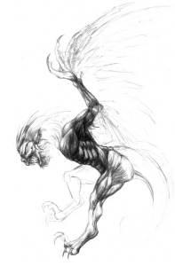Esquisse des muscles d'une harpie en attaque