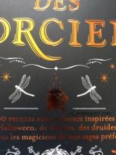 La cuisine des sorciers d'Aurélia Beaupommier détails couverture