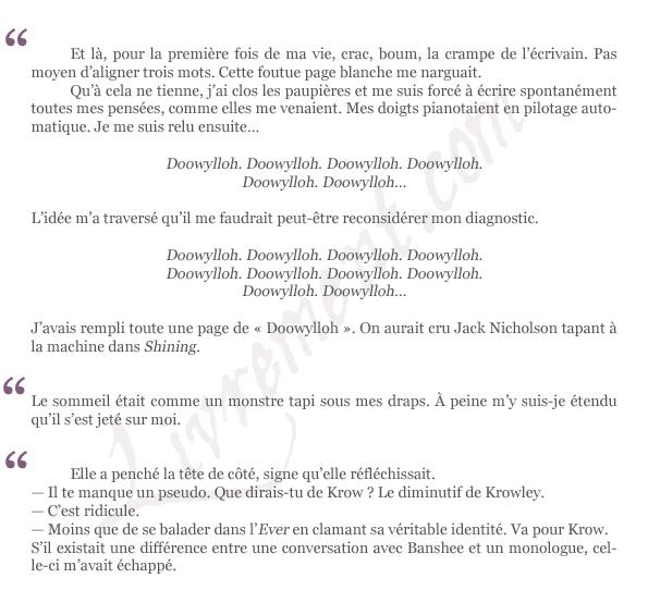 citations-journal-d-un-marchand-de-reves-anthelme-hauchecorne