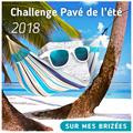 """Logo du challenge littéraire """"pavé de l'été"""" 2018 représentant un pavé (pierre) dans un hamac de plage"""