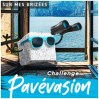 Logo challenge Pavévasion