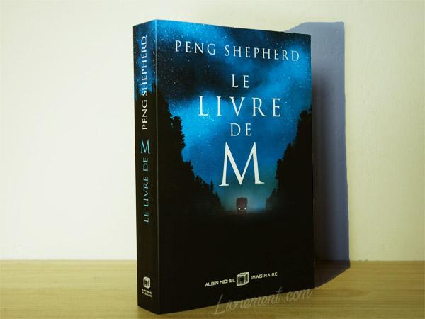 Mise en scène du roman Le livre de M de Peng Sheperd : l'importance de son ombre
