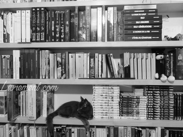 Moriarty dans le seul espace libre de la bibliothèque