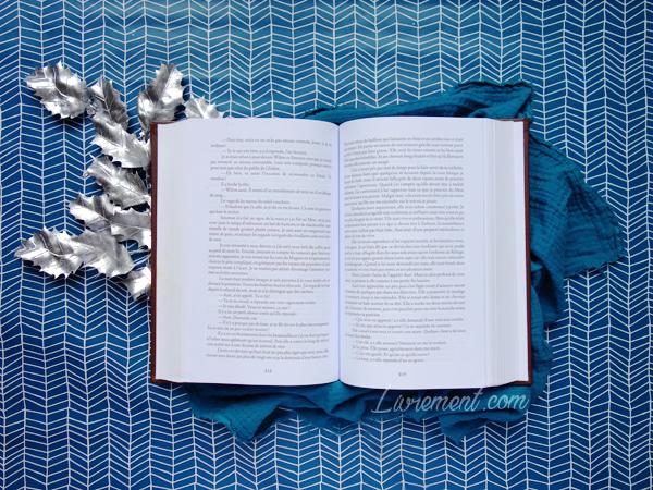 Mise en scène d'un livre ouvert posé sur un papier bleu pour souhaiter les voeux blog Livrement
