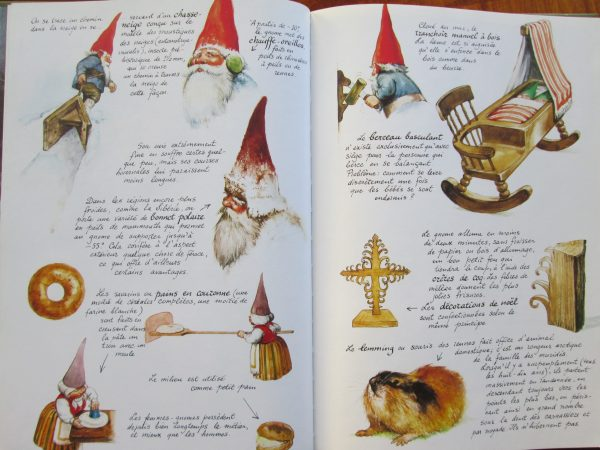 livre secret gnomes