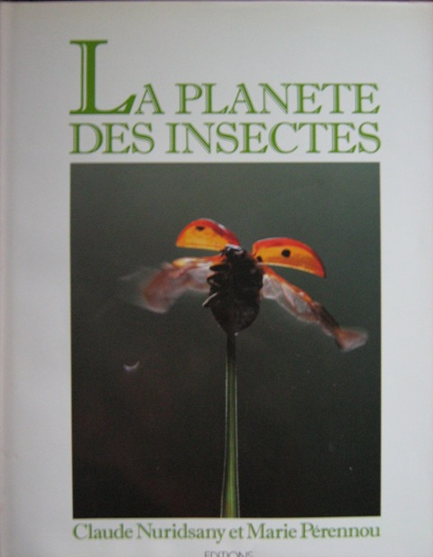 La planète des insectes