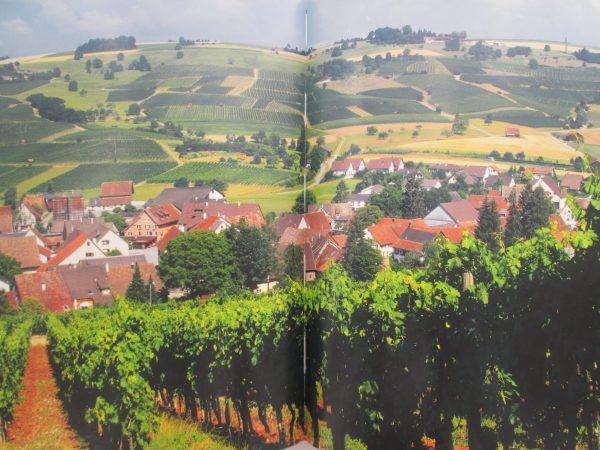 Vignobles suisses