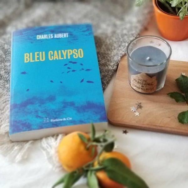 Bleu Calypso - Charles Aubert