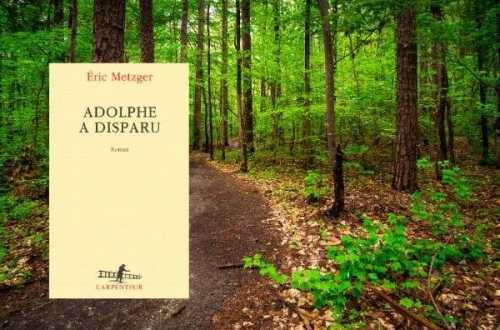 Adolphe-a-disparu-eric-Metzer-blog-littéraire.