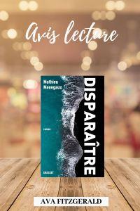 Disparaitre - blog littéraire - Mathieu Menegaux