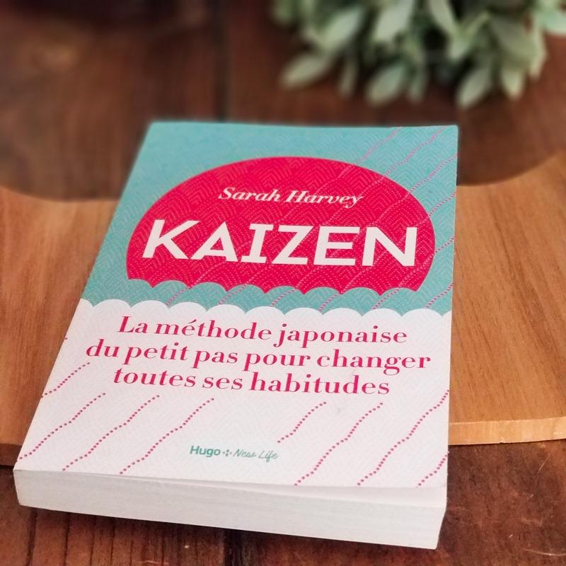 Sarah Harvey -Kaizen