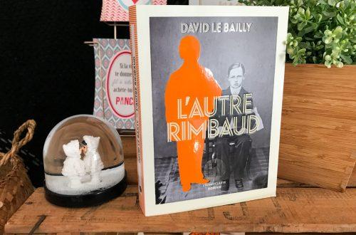 livre L'autre Rimbaud - David le Bailly