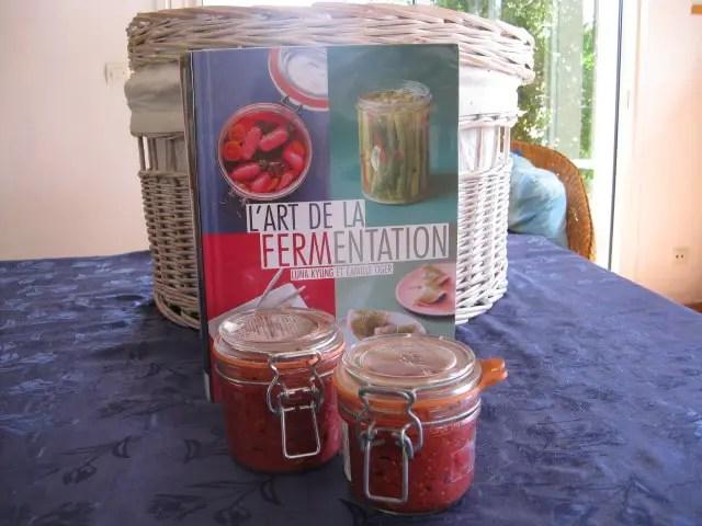 livres lacto-fermentation tomates, courgettes haricots
