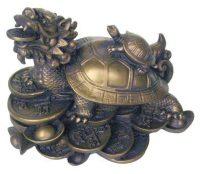 120976 Draksköldpadda