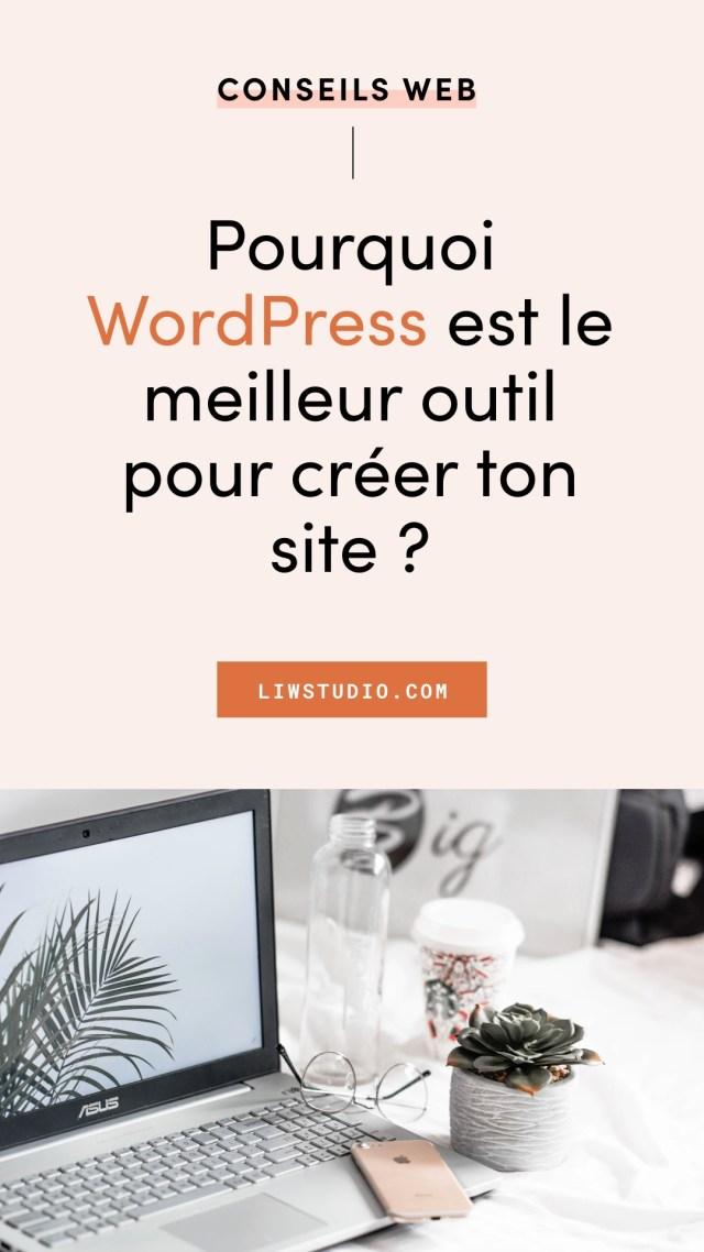 Pourquoi je recommande WordPress pour créer son site internet ? Pourquoi choisi WordPress.org. Les avantages de WordPress