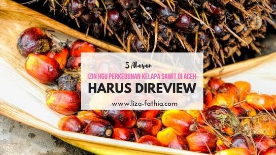 Review Izin untuk Penataan Perizinan Perkebunan Kelapa Sawit