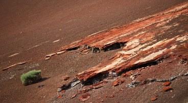 Lanzarotes rote Schotterlinsen. Eine Insel ganz Vulkan.