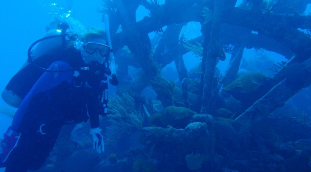 Pam diving on the Mary Celestia, Bermuda
