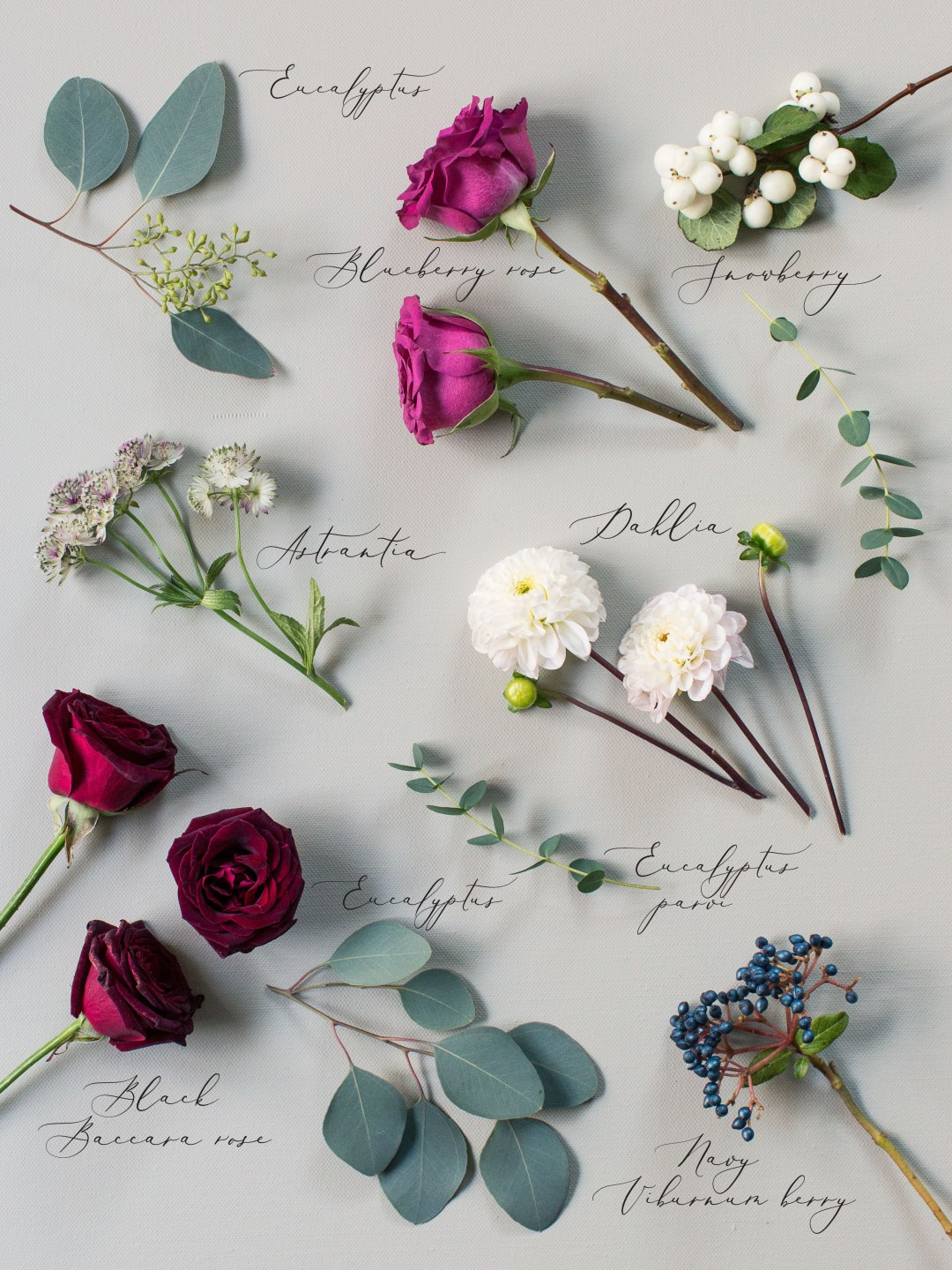 Wedding Bouquet Preservation | The Botanical Bouquet | Liz Baker