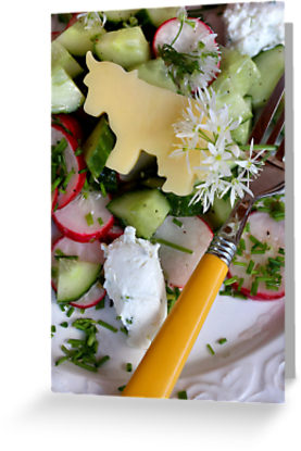 Housemade Cheese and Wild Garlic Blossom Dressing With Salad © Liz Collet