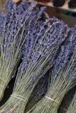 Duftträume aus der Provence © Liz Collet