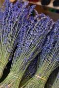 Lavendel © Liz Collet
