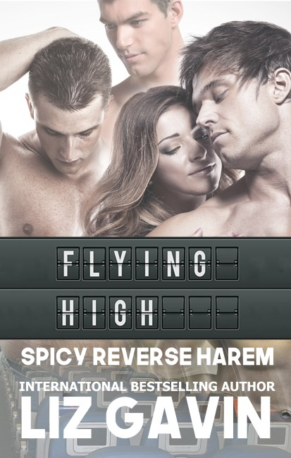 flying high RH ebook