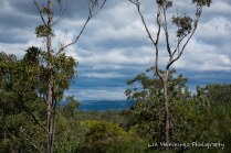 View to the Blue Mountains