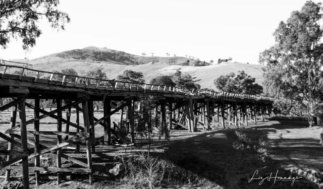 Old Railway Bridge at Gundagai October 2019-3485-1