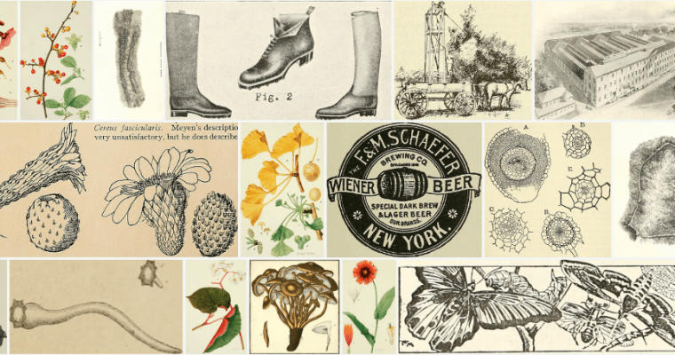 Free Image Resources for iPad Artists, Illustrators, and Hobbyists