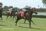 Tale of a Champion (KY) with jockey Luis Saez