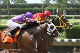 Trinniberg (KY) (inside horse) places behind winner Fort Loudon (FL)