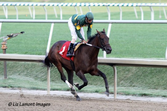 Dust and Diamonds breaks her maiden at Laurel Park