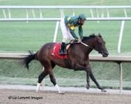 Dust and Diamonds (KY) with jockey Julian Pimentel
