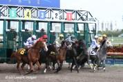 2011.02.05 R3 $51K Allowance - Winner, breaking from the starting gate #5 Fort Larned, with jockey Jermaine Bridgmohan