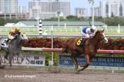 2011.02.05 R3 $51K Allowance - Winner, edges out Casper's Touch with jockey Julien Leparoux
