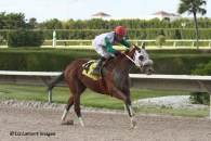 The Elmer Heubeck Distaff Handicap winner