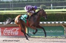 Florida Stallions Stakes Susans Girl Division winner