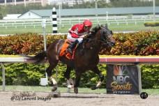 The Skip Away Stakes GIII winner