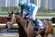 Live Lively (KY) with jockey Rajiv Maragh on board returns from her 2nd place finish in the Gulfstream Oaks Stakes (G2)