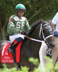 My Brown Eyed Guy (FL) in the post parade with jockey Eduardo Nunez on board