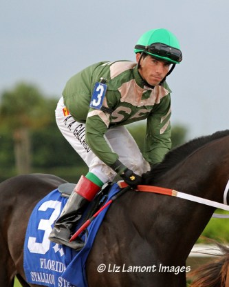 Jockey Antonio Gallardo warms up after the post parade on My Brown Eyed Guy (FL) before winning the Affirmed Division of the Florida Stallion Stakes