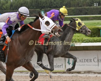Tempest's Flash, with jockey Jose Rodriguez on board, places behind Golden Friendships with jockey Manoel Cruz on board.
