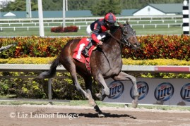 Tonalist (KY) breaks his maiden earlier in the year at Gulfstream Park