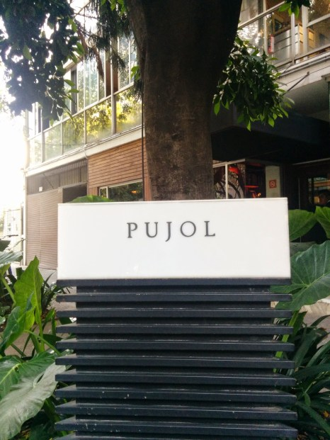 Pujol, polanco district