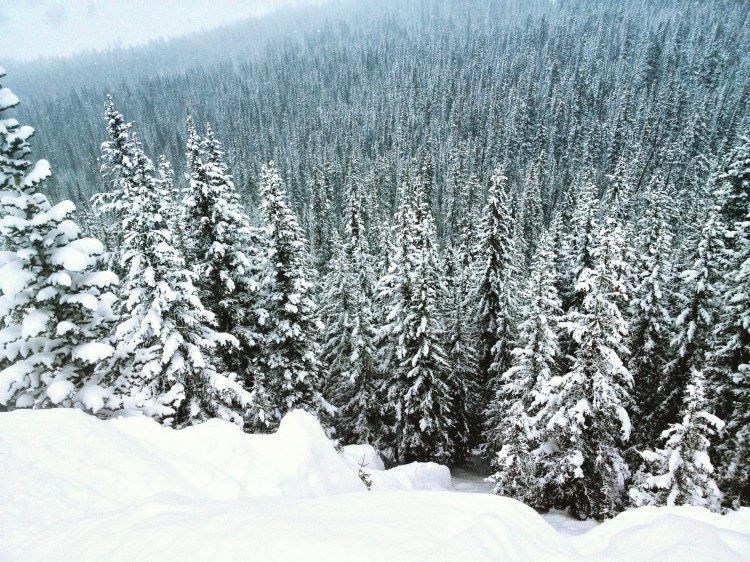 Vail, CO Travel Guide on a Budget