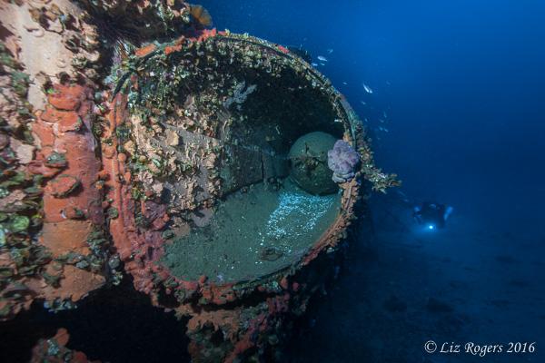 Torpedo on the Schnellboot