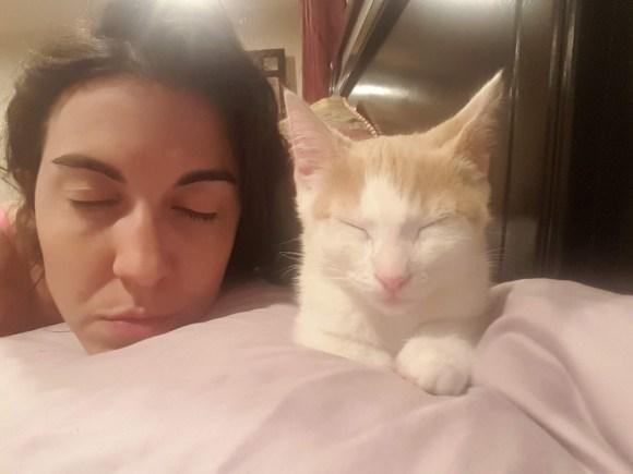 Woman and kitten sleeping