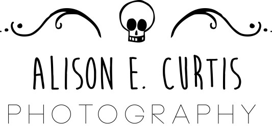 Logo - Alison Curtis Photography