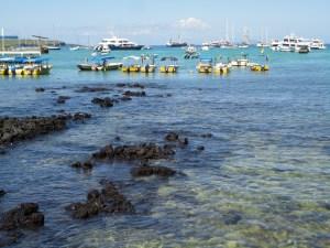 Ecuador Part 2: Galapagos!